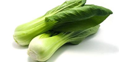 青梗菜/チンゲンサイのイメージ画像:食べ物辞典トップ用