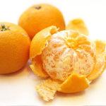みかんのイメージ画像:食べ物辞典トップ用